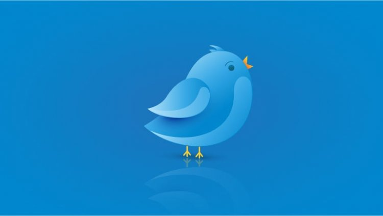 tips to optimize your twitter profile